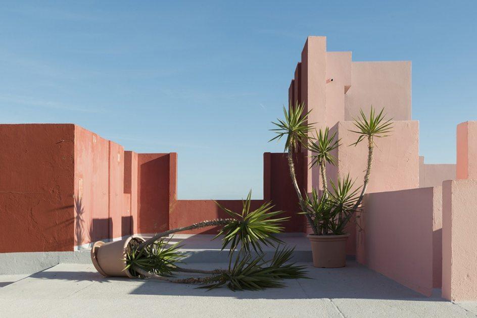 'Palm Trees Routine', de Andrés Gallardo Albajar